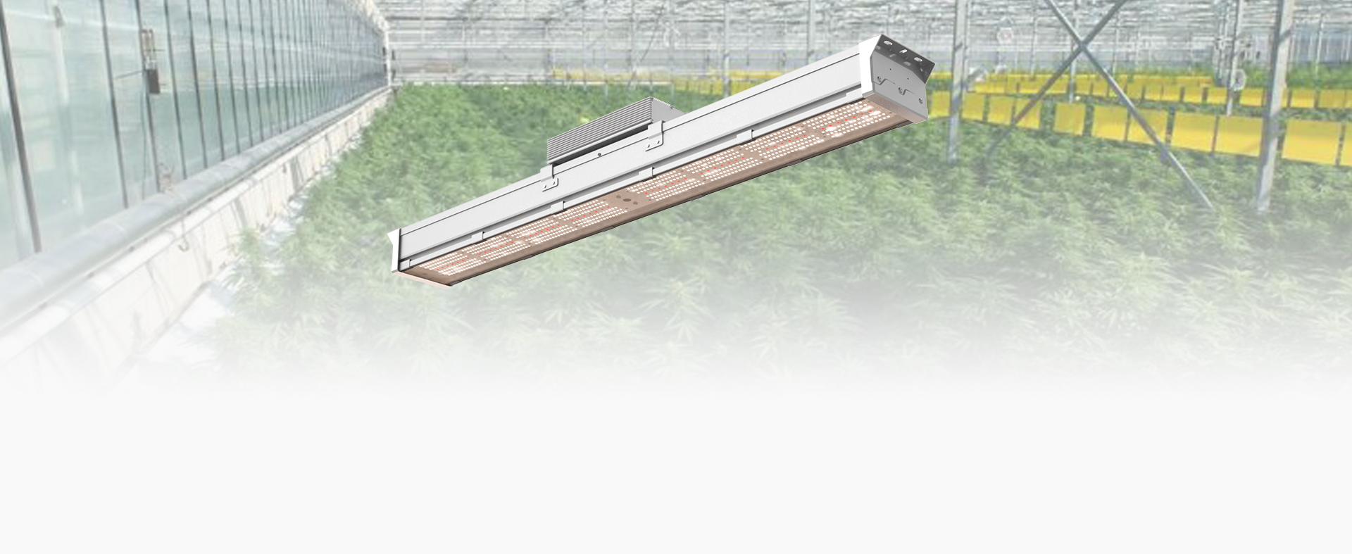 Horti-King LED Grow Light - Atop Lighting